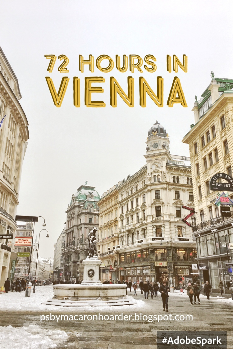 72 Hours in Vienna Austria