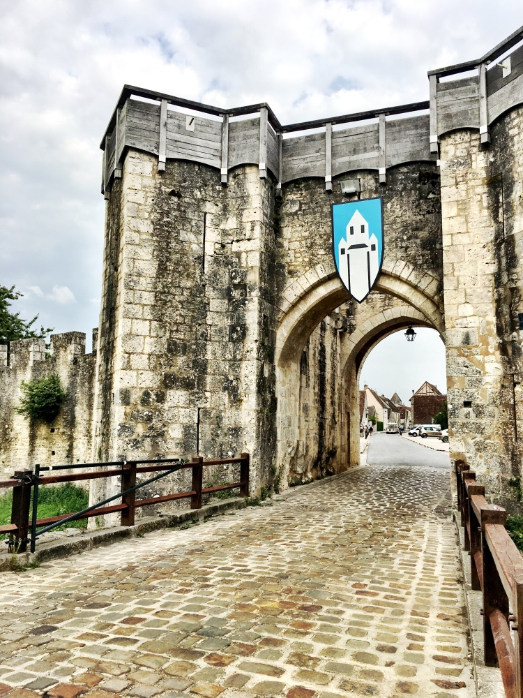 Jouy Gate Provins France