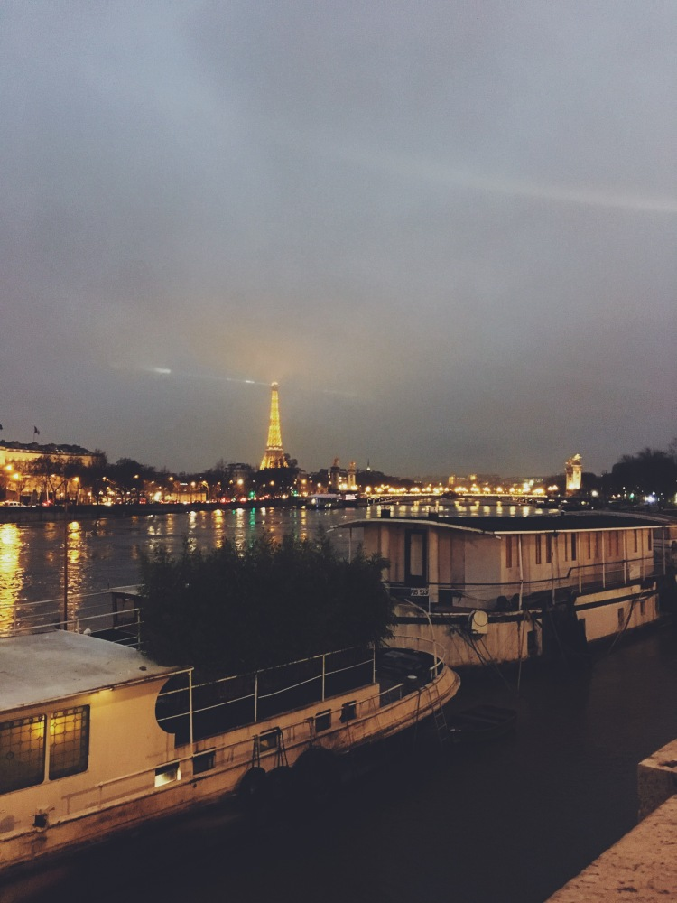 Tour Eiffel Seine River February 2018