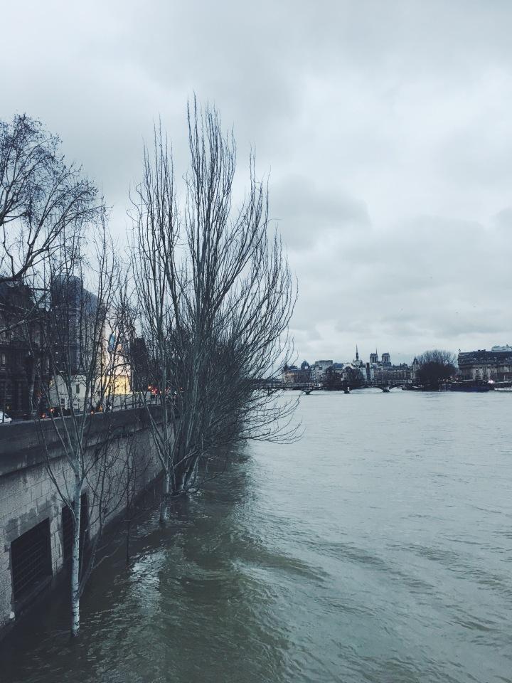 Ile de la Cite Seine River 6