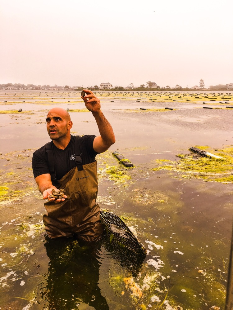 Perry Raso, owner of Matunuck Oyster Farm