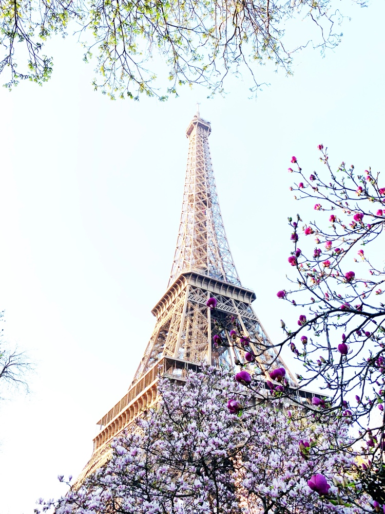 Eiffel Tower in Paris, France during spring time