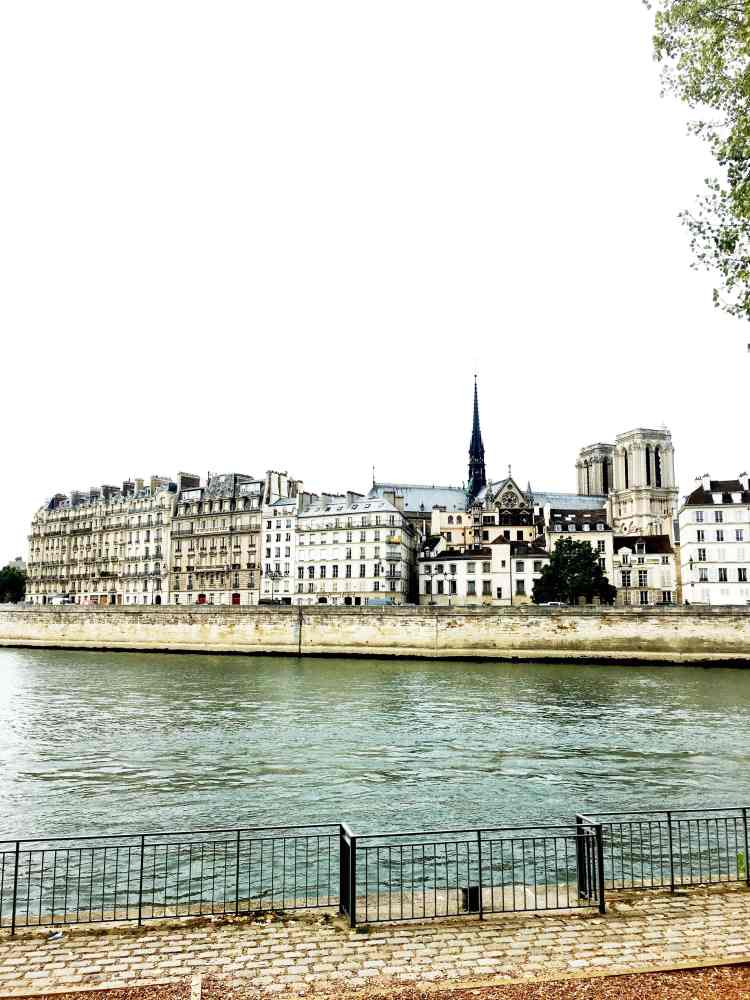View of Notre Dame cathedral and Seine River